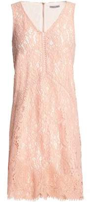 Tart Collections Corded Lace Mini Dress