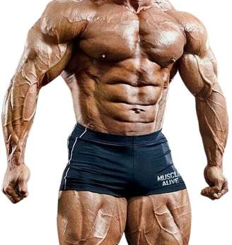 a463051aef MUSCLE ALIVE Musclealive Bodybuilding Short Tights 90% Polyester 10%  Spandex Size L PLN-