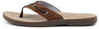 Sperry New Baitfish Thong Brown Buc Brown Mens Shoes Casual Sandals Sandals Flat