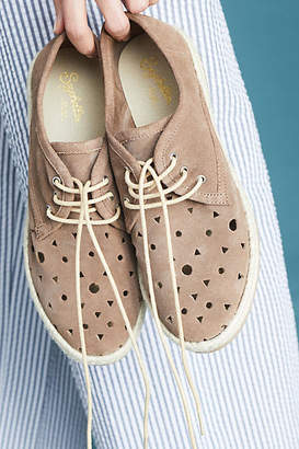 Seychelles Distinguished Perforated Oxfords