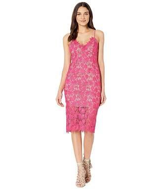 Bardot Tayla Lace Dress
