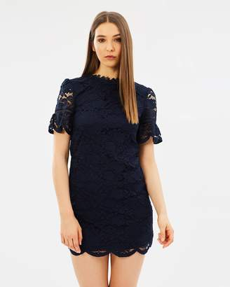 Oasis Lace High Neck Flute Sleeve Dress