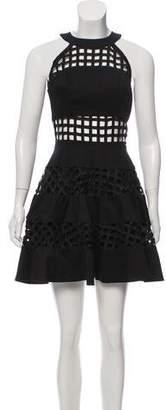 Alexis Sleeveless A-Line Dress
