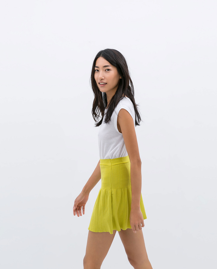 Zara Skirt With Elastic Waist