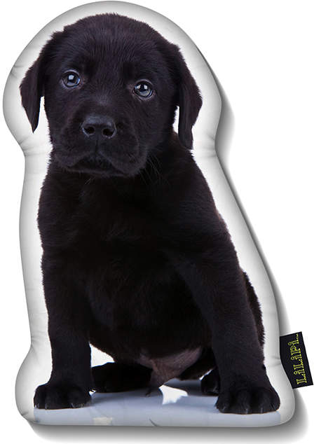 Black Lab Puppy Throw Pillow