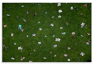 Dacor Gray Malin Gray Malin Central Park Lawn Print