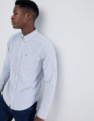 Hollister Button Down Seagull Logo Wide Marl Stripe Slim Fit Shirt in White/Blue