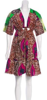 Stella McCartney 2017 Printed Dress