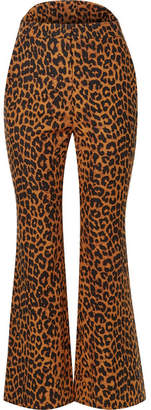 Pushbutton - Leopard-print Cotton Flared Pants - Leopard print