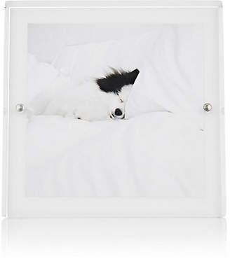 """Alexandra Von Furstenberg Voltage 5"""" x 5"""" Picture Frame - White"""