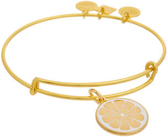 Alex and Ani Charity By Design Charm Bracelet