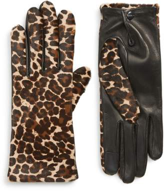 Agnelle Leopard Print Genuine Calf Hair & Lambskin Leather Gloves