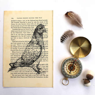 Pigeon feltmeupdesigns Screen Print On Vintage Book Page