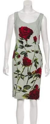 Dolce & Gabbana Floral Knee-Length Dress