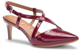 Calvin Klein Paula Pointy Toe Slingback Pump (Women)