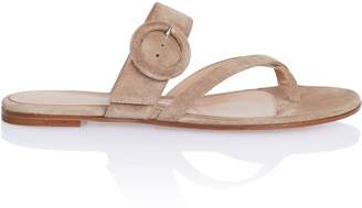 Gianvito Rossi Suede Buckle Thong Slide