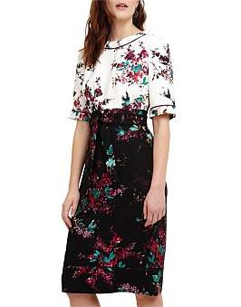 Phase Eight Ariana Floral Print Dress