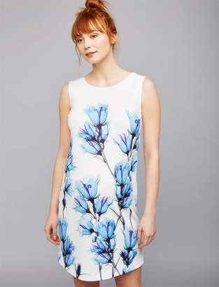 Pietro Brunelli Floral Sheath Maternity Dress