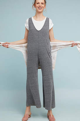 Cloth & Stone Heather Jumpsuit