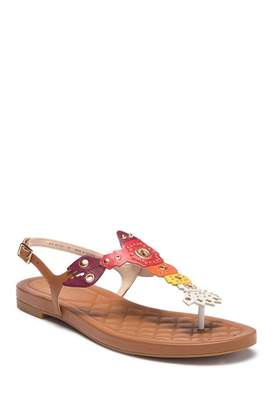 Cole Haan Pinch Lobster Sandal