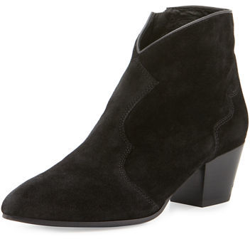 Ash Ash Hurricane Pointed-Toe Bootie