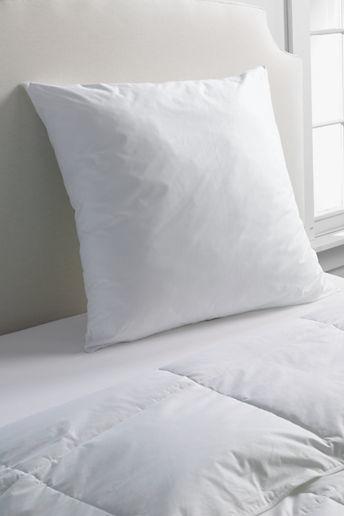 Lands' End Euro Pillow Insert