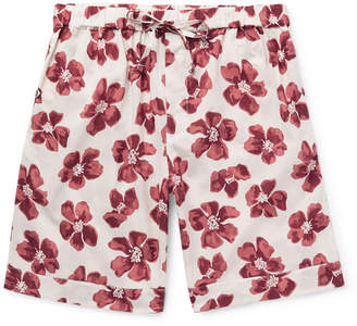 Desmond & Dempsey - Victor Printed Cotton Pyjama Shorts - Men - Red