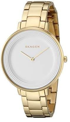 Skagen Women's SKW2330 Ditte Link Watch