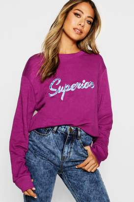 boohoo Embroidered Slogan Sweat
