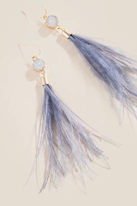 francesca's Desiree Druzy Feather Earrings - Gray