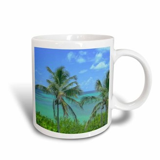 3dRose Florida Key Perfection, Ceramic Mug, 15-ounce