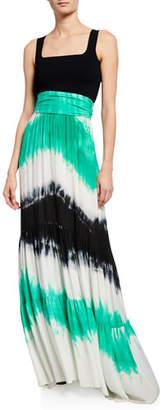 A.L.C. Hopkins Tie-Dye High-Waist Maxi Skirt