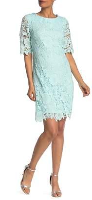 Sandra Darren Lace 3\u002F4 Sleeve Dress