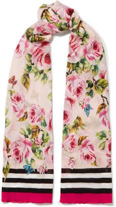 Dolce & Gabbana Floral-print Silk-chiffon Scarf - Pink