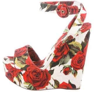 Dolce & Gabbana Rose Platform Wedges