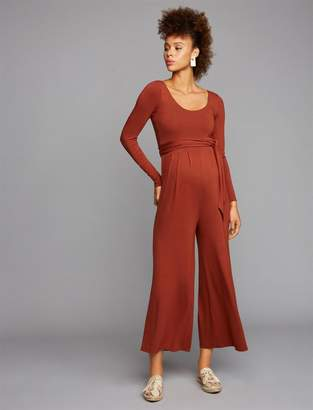 A Pea in the Pod Maternity Jumpsuit