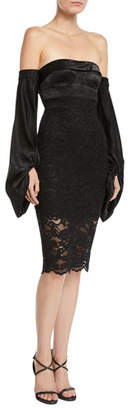 Misha Constance Strapless Long-Sleeve Lace Dress