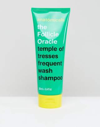 Anatomicals The Follicle Oracle Shampoo 250ml