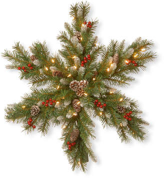"""National Tree Company 32"""" Frosted Berry Snowflakes with 50 Warm White Battery Operated Led Lights with Timer"""