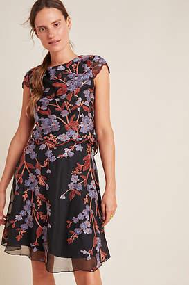 Eva Franco Alessia Embroidered Chiffon Mini Dress