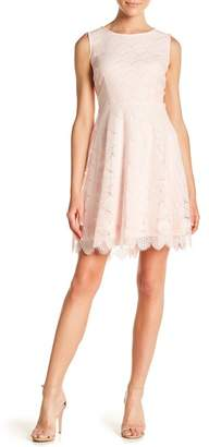Kensie Sleeveless Scalloped Hem Lace Dress
