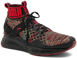 Puma Select Ignite Evoknit Multicolor