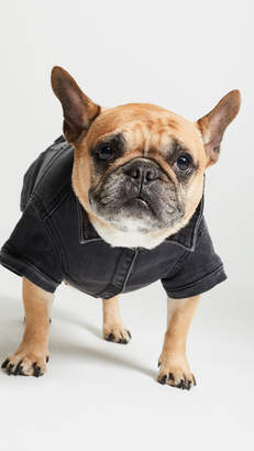 DL1961 Pet's Fido Dog Jean Jacket