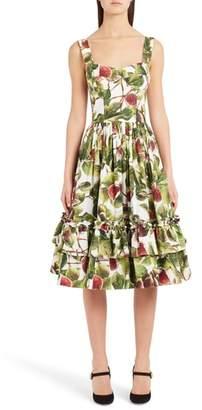 Dolce & Gabbana Fig Print Poplin Dress