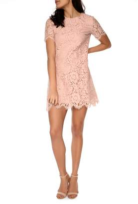 Amalie & Amber - Light Pink Lace Dress