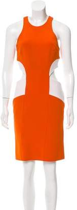 Cushnie et Ochs Cutout Mini Dress
