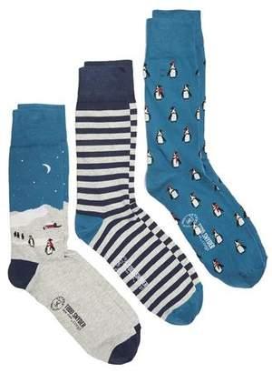 Corgi Snowy Penguin Scene Cotton 3 sock Gift Box