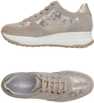 Andrea Morelli Low-tops & sneakers - Item 11456942BJ