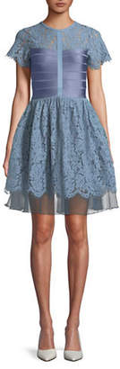 French Connection Lace Fit-and-Flare Dress