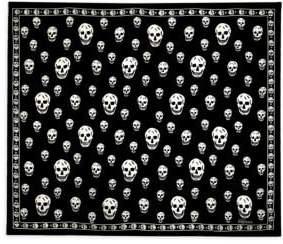 Alexander McQueen Silk Skull-Print Scarf